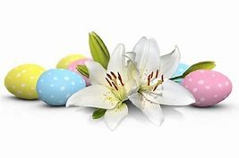 Easter lily and eggs