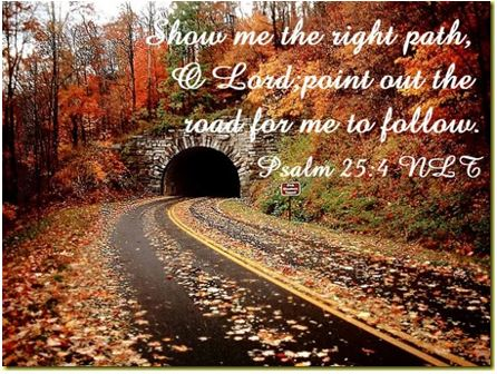 Show me the right path, Lord point out the road for me to follow. Psalm 25:4